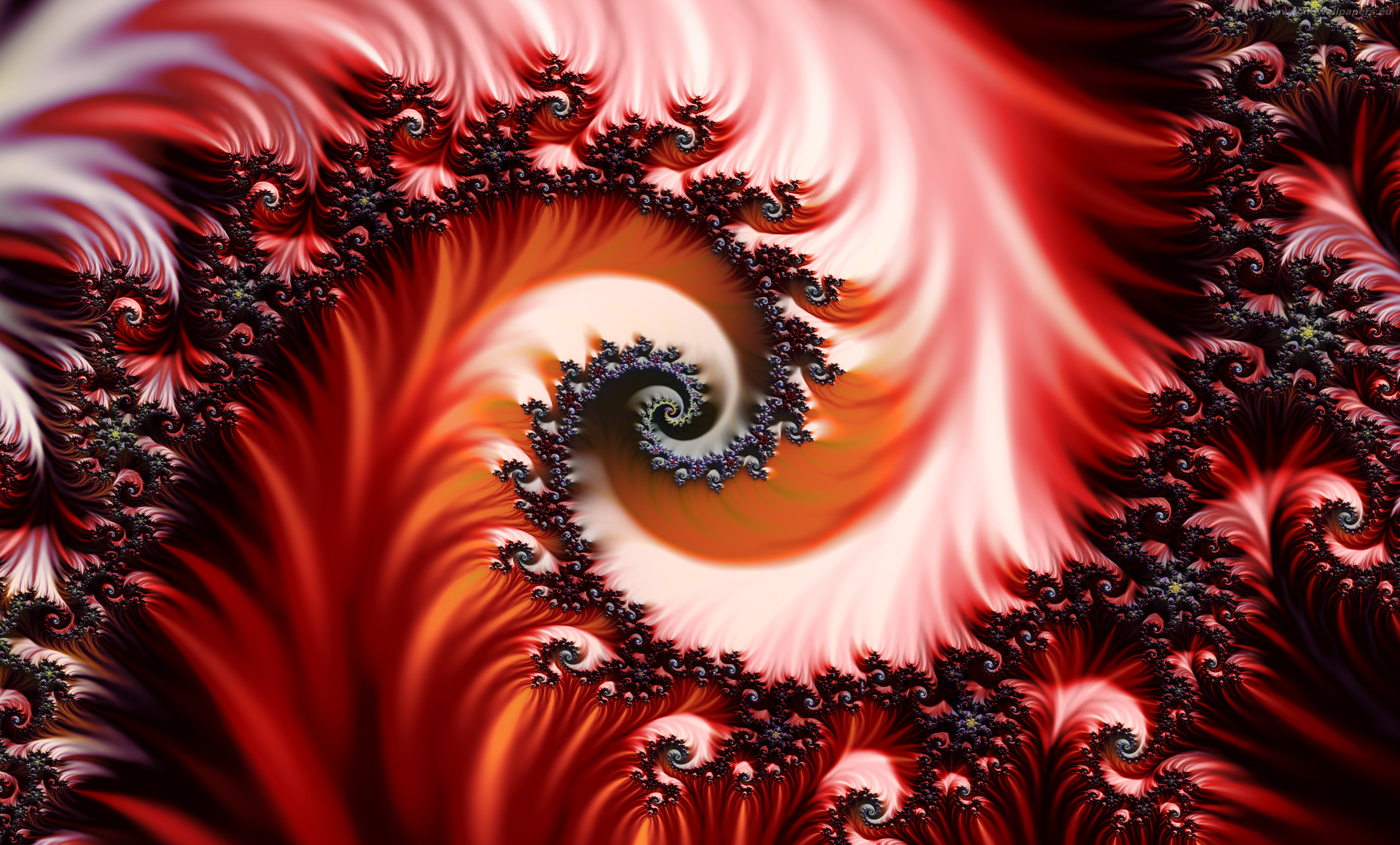 red fractal full High definition wallpaper
